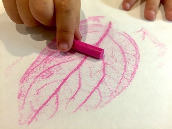 fun crafts for kids leaf rubbings
