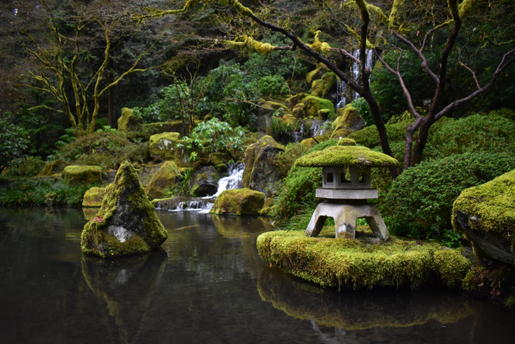 portland japanese tea garden oregon