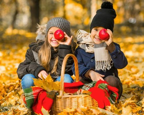 Fall Activities For Families And Au Pairs