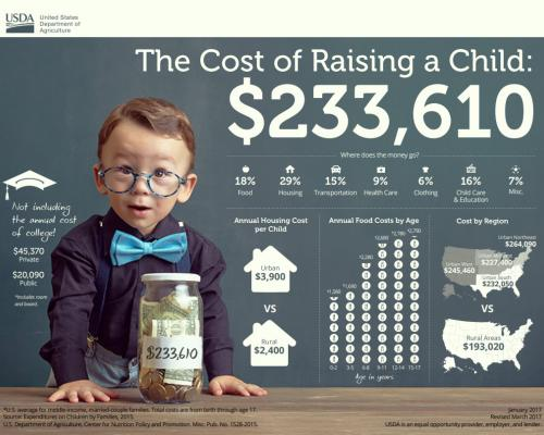 Cost of Raising a Child Infographic