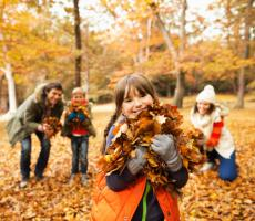 Autum and Fall Activities for Families